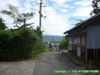 11-204徳島県阿波市
