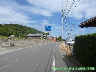 11-205徳島県阿波市