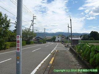11-209徳島県阿波市県道139号線交差点