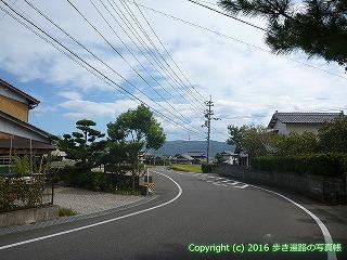 11-210徳島県阿波市