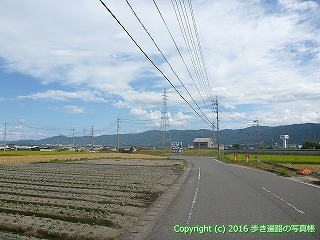 11-211徳島県阿波市