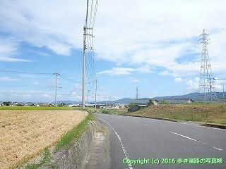 11-213徳島県阿波市