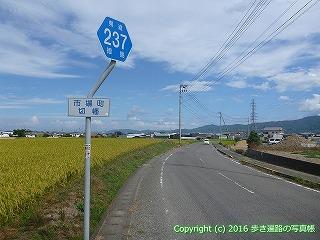 11-214徳島県阿波市