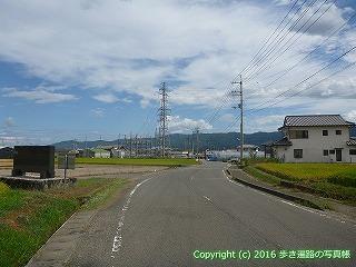 11-215徳島県阿波市
