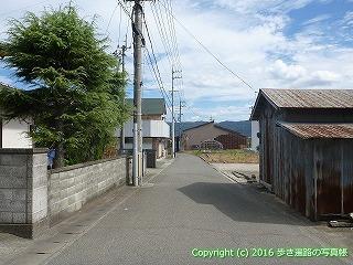 11-219徳島県阿波市