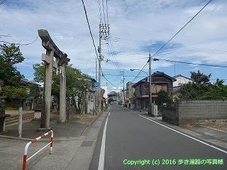 11-226徳島県阿波市