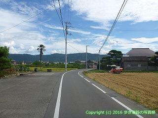 11-229徳島県阿波市