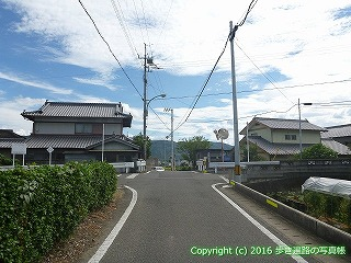 11-230徳島県阿波市吉野川沿いルート分岐点
