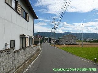 11-231徳島県阿波市