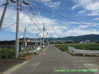 11-235徳島県阿波市