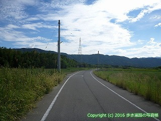 11-256徳島県阿波市
