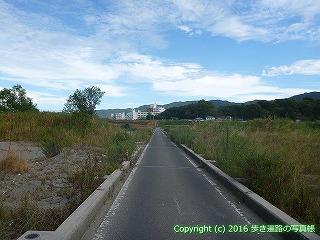 11-266徳島県阿波市