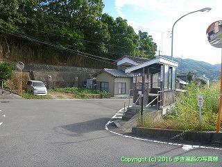 11-273徳島県吉野川市