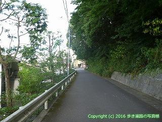 11-276徳島県吉野川市