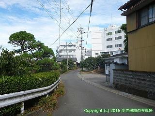 11-277徳島県吉野川市
