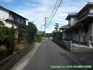11-279徳島県吉野川市