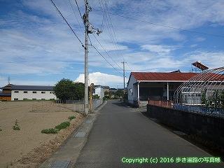 11-280徳島県吉野川市