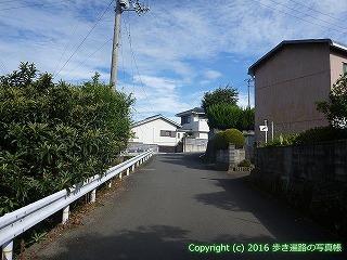 11-281徳島県吉野川市