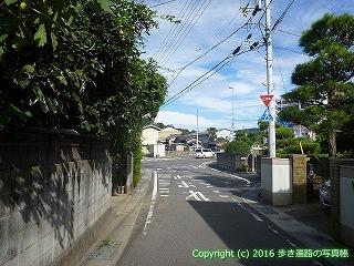 11-286徳島県吉野川市