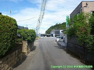 11-288徳島県吉野川市