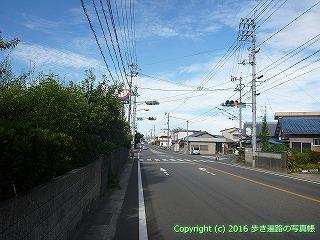 11-290徳島県吉野川市