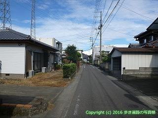11-293徳島県吉野川市