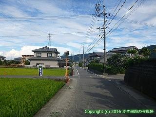 11-296徳島県吉野川市