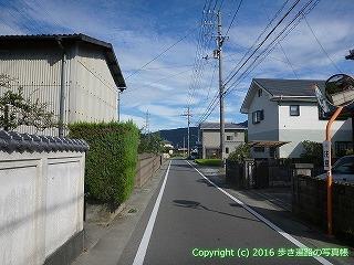 11-297徳島県吉野川市