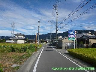 11-298徳島県吉野川市