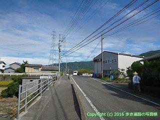 11-304徳島県吉野川市