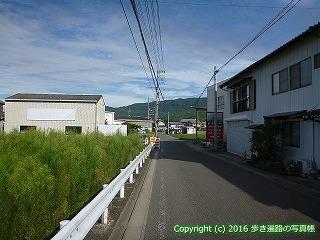 11-305徳島県吉野川市