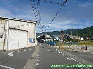 11-306徳島県吉野川市