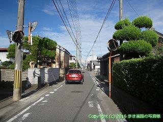 11-307徳島県吉野川市