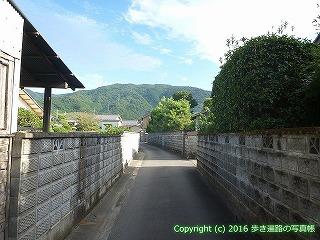 11-308徳島県吉野川市