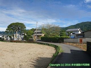 11-309徳島県吉野川市