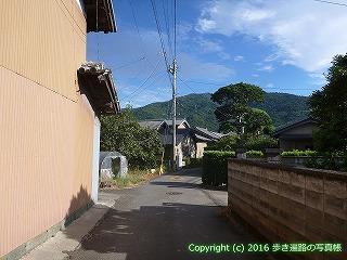 11-310徳島県吉野川市