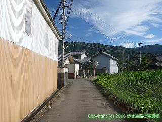11-312徳島県吉野川市