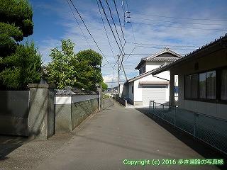 11-313徳島県吉野川市