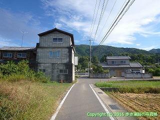 11-317徳島県吉野川市