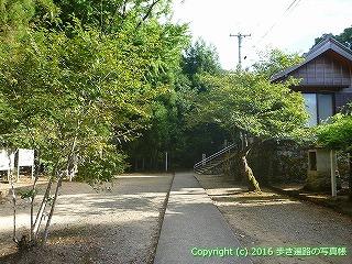 11-338徳島県吉野川市