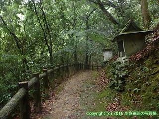 12-012徳島県吉野川市