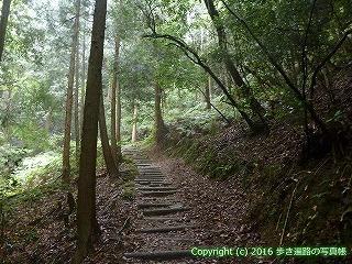 12-013徳島県吉野川市
