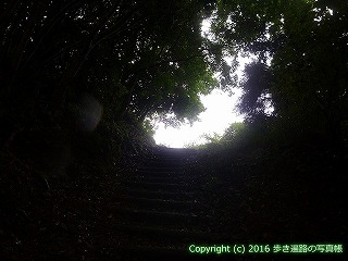 12-017徳島県吉野川市