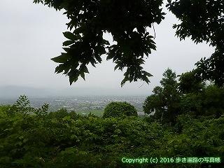 12-020徳島県吉野川市