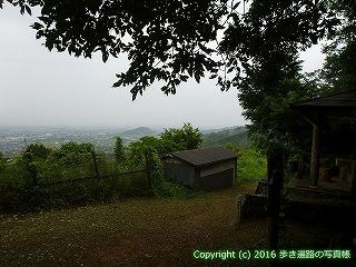12-022徳島県吉野川市
