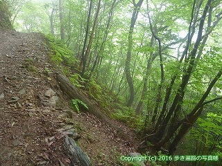 12-037徳島県吉野川市