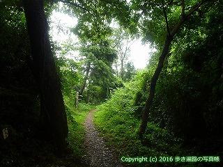 12-051徳島県吉野川市