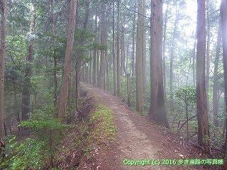 12-071徳島県吉野川市