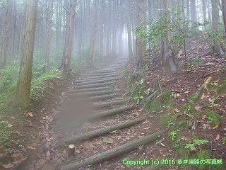 12-073徳島県吉野川市