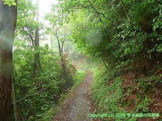 12-076徳島県吉野川市